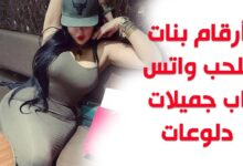ارقام بنات للحب 8 220x150 - Dating girls 2020 with the goal of love Girls are waiting for you for dating and free chat
